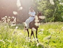 прогулки верхом на лошадях в Беларуси