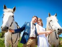 прогулки на лошадях в Беларуси