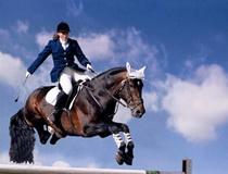 катание на лошадях в Беларуси