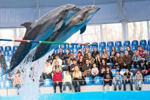 Минск - дельфинарий