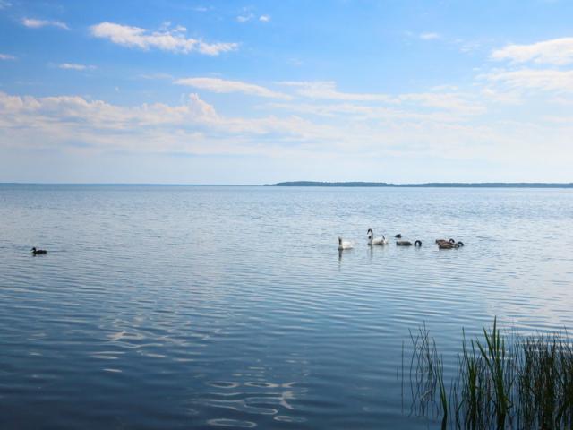 Каникулы на озере Нарочь